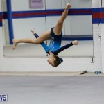 International Gymnastics Challenge Bermuda, November 14 2015-82