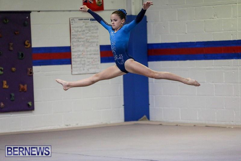 International-Gymnastics-Challenge-Bermuda-November-14-2015-83