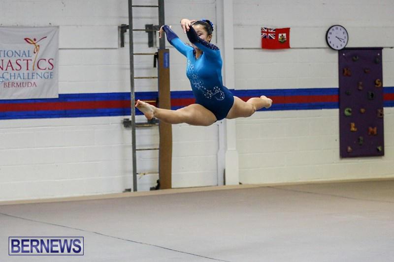 International-Gymnastics-Challenge-Bermuda-November-14-2015-86