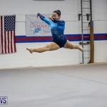 International Gymnastics Challenge Bermuda, November 14 2015-87