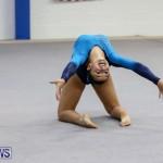 International Gymnastics Challenge Bermuda, November 14 2015-89