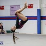 International Gymnastics Challenge Bermuda, November 14 2015-9
