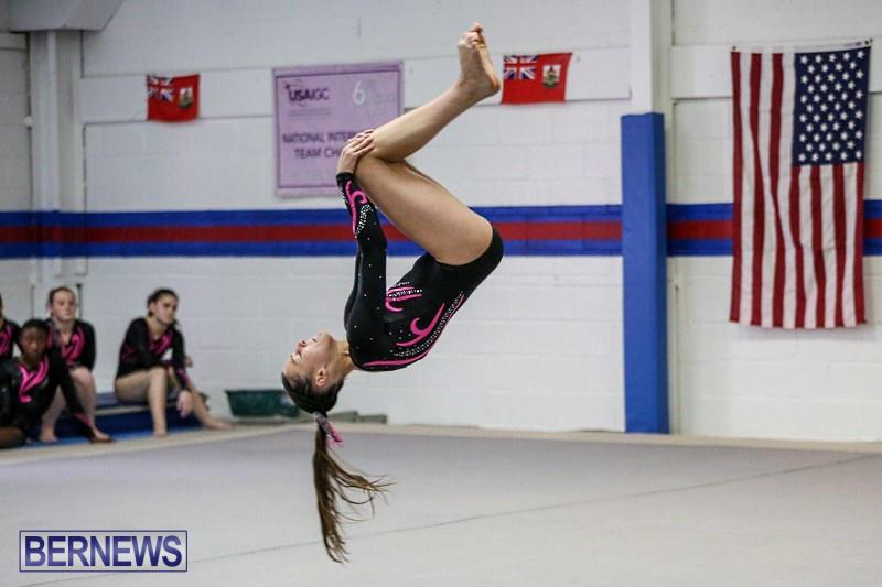 International-Gymnastics-Challenge-Bermuda-November-14-2015-9