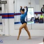 International Gymnastics Challenge Bermuda, November 14 2015-93