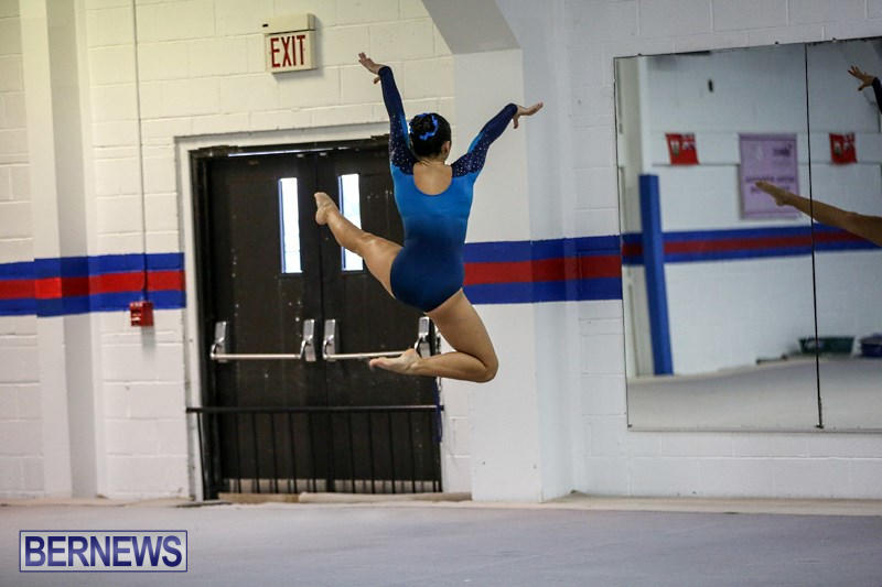 International-Gymnastics-Challenge-Bermuda-November-14-2015-94
