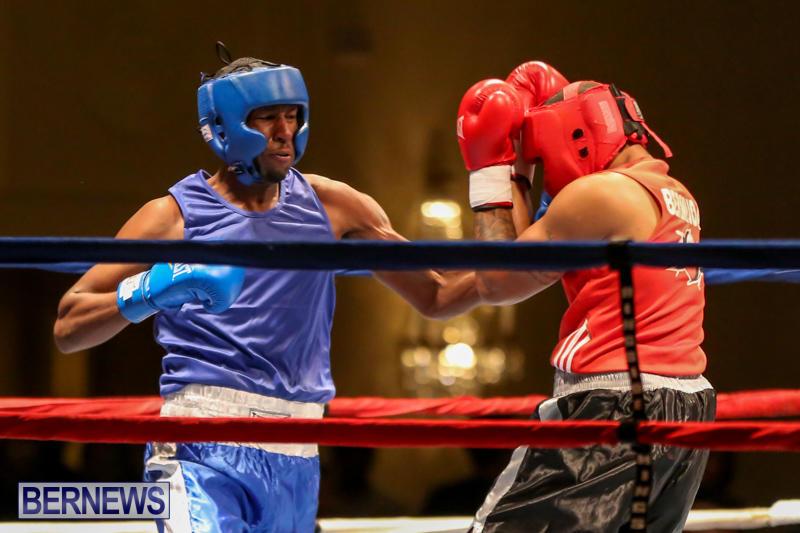 Keanu Wilson vs Courtney Dublin Boxing Match Bermuda, November 7 2015-10