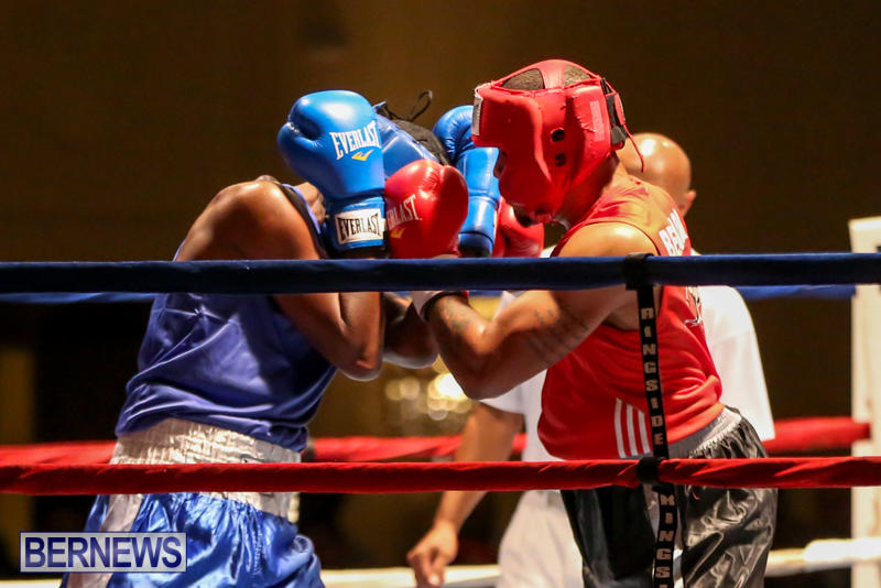 Keanu Wilson vs Courtney Dublin Boxing Match Bermuda, November 7 2015-12
