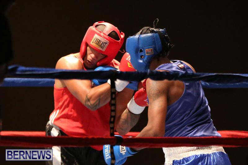Keanu Wilson vs Courtney Dublin Boxing Match Bermuda, November 7 2015-19