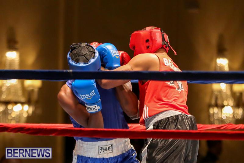 Keanu Wilson vs Courtney Dublin Boxing Match Bermuda, November 7 2015-6