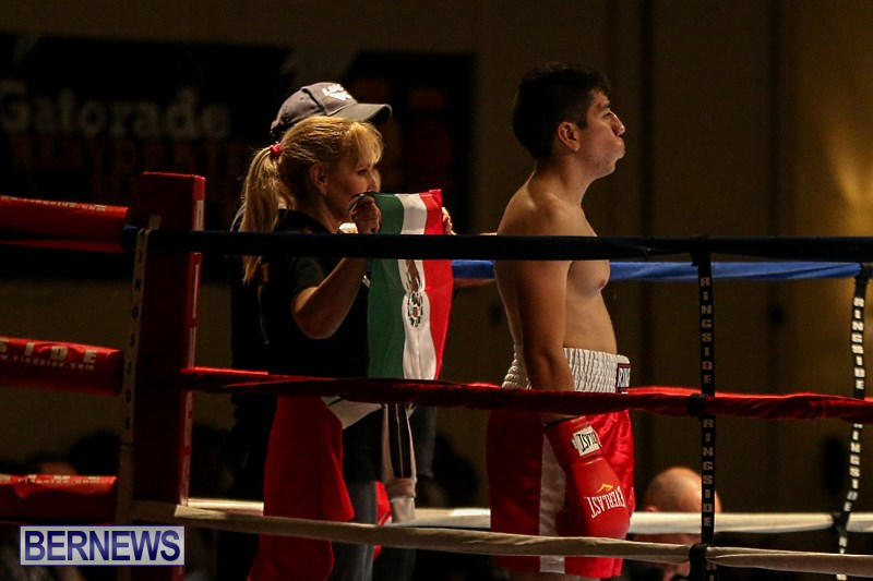 Nikki-Bascome-vs-Pilo-Reyes-Boxing-Match-Bermuda-November-8-2015-2