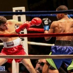 Nikki Bascome vs Pilo Reyes Boxing Match Bermuda, November 8 2015-7