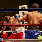 Nikki Bascome vs Pilo Reyes Boxing Match Bermuda, November 8 2015-9