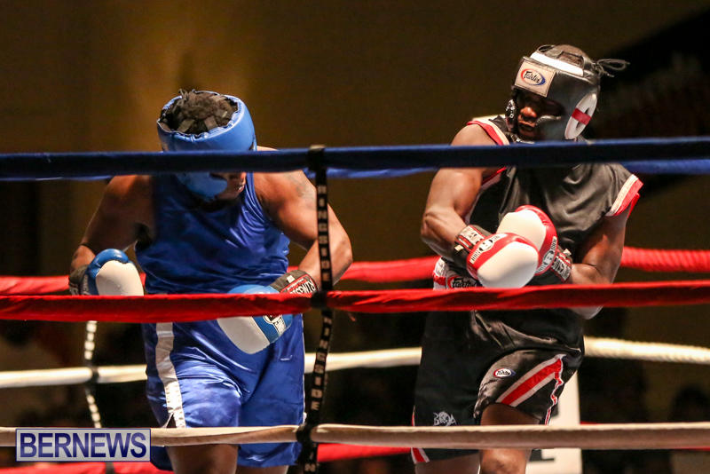 Shannon Ford vs Stefan Dill Boxing Match Bermuda, November 7 2015-12