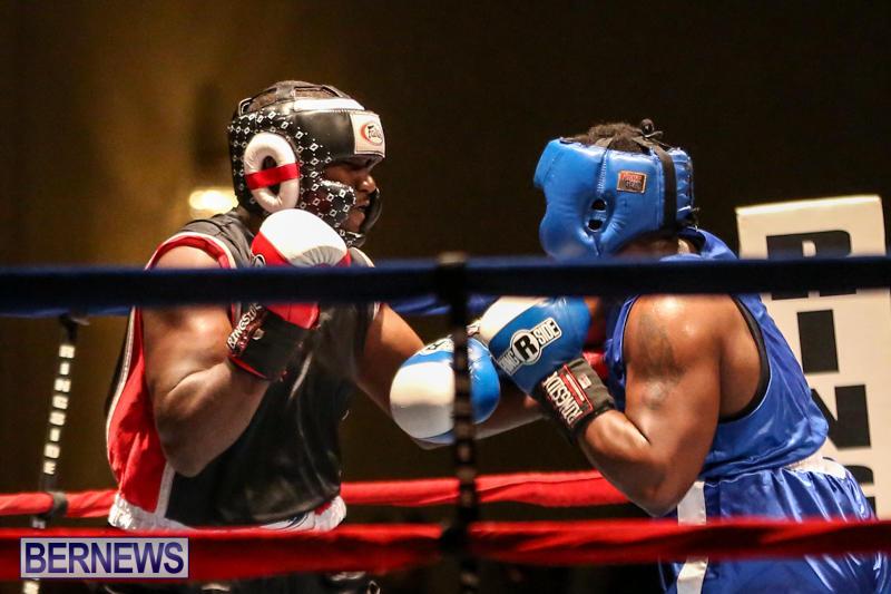 Shannon Ford vs Stefan Dill Boxing Match Bermuda, November 7 2015-16