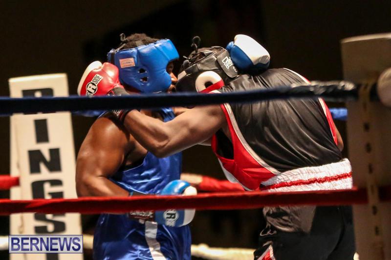 Shannon Ford vs Stefan Dill Boxing Match Bermuda, November 7 2015-2