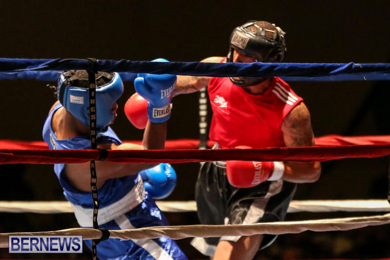 Zain Philpott vs Shomari Warner Boxing Match Bermuda, November 7 2015 (4)