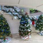 2015 Bermuda Christmas Trees in  Mall JM (1)