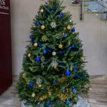 2015 Bermuda Christmas Trees in  Mall JM (2)