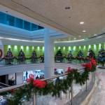 2015 Bermuda Christmas Trees in  Mall JM (5)