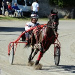 Bermuda Harness Pony Racing Dec 2015 (15)