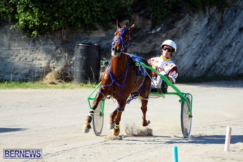 Bermuda-Harness-Pony-Racing-Dec-2015-16