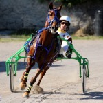 Bermuda Harness Pony Racing Dec 2015 (17)