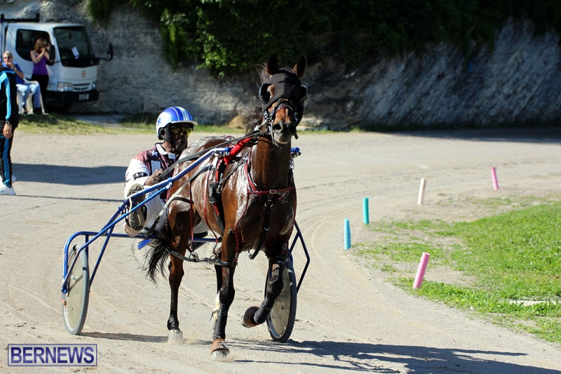 Bermuda-Harness-Pony-Racing-Dec-2015-18