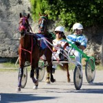 Bermuda Harness Pony Racing Dec 2015 (4)