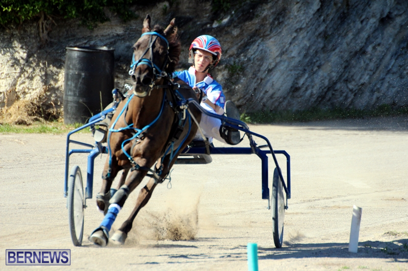 Bermuda-Harness-Pony-Racing-Dec-2015-5