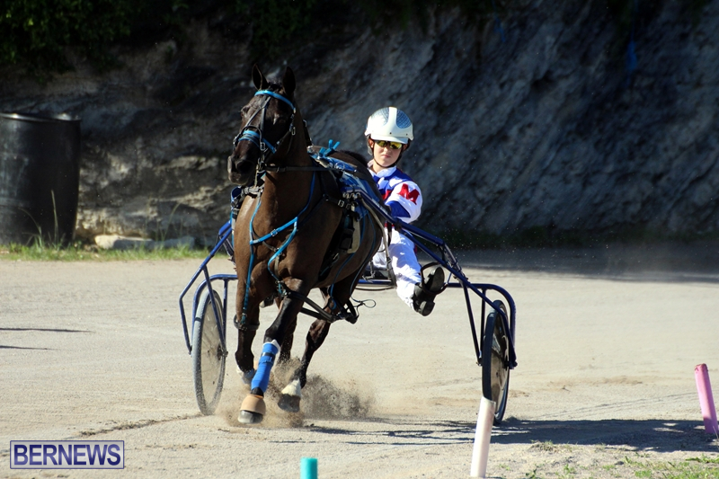 Bermuda-Harness-Pony-Racing-Dec-2015-9
