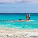 Christmas Day Bermuda Dec 25 2015 2 (52)