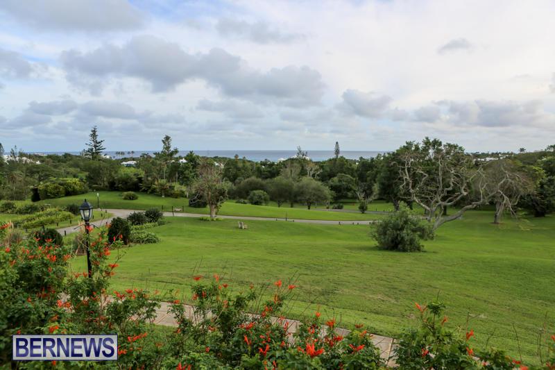 Edible-Creations-Garden-Cafe-Grand-Opening-Bermuda-December-11-2015-2