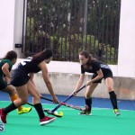 Hockey Bermuda Dec 2 2015 (18)