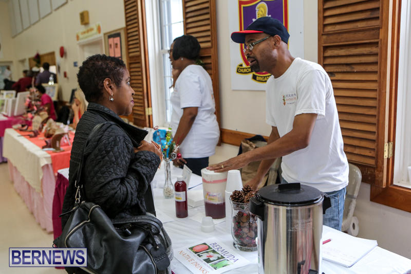 Home-Grown-Alternatives-Crafts-Show-Bermuda-December-5-2015-96
