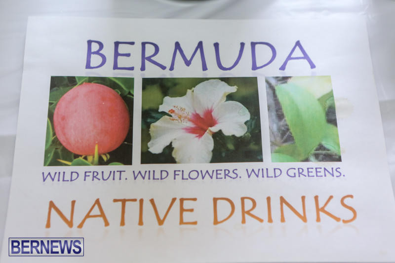 Home-Grown-Alternatives-Crafts-Show-Bermuda-December-5-2015-99