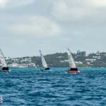 moth-bermuda-day-sailing-2015-30