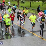 10K Race Bermuda Marathon Weekend, January 16 2016-116