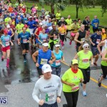 10K Race Bermuda Marathon Weekend, January 16 2016-42