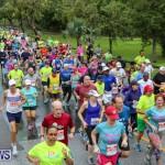 10K Race Bermuda Marathon Weekend, January 16 2016-44