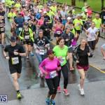 10K Race Bermuda Marathon Weekend, January 16 2016-61