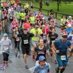 10K Race Bermuda Marathon Weekend, January 16 2016-67