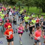 10K Race Bermuda Marathon Weekend, January 16 2016-69