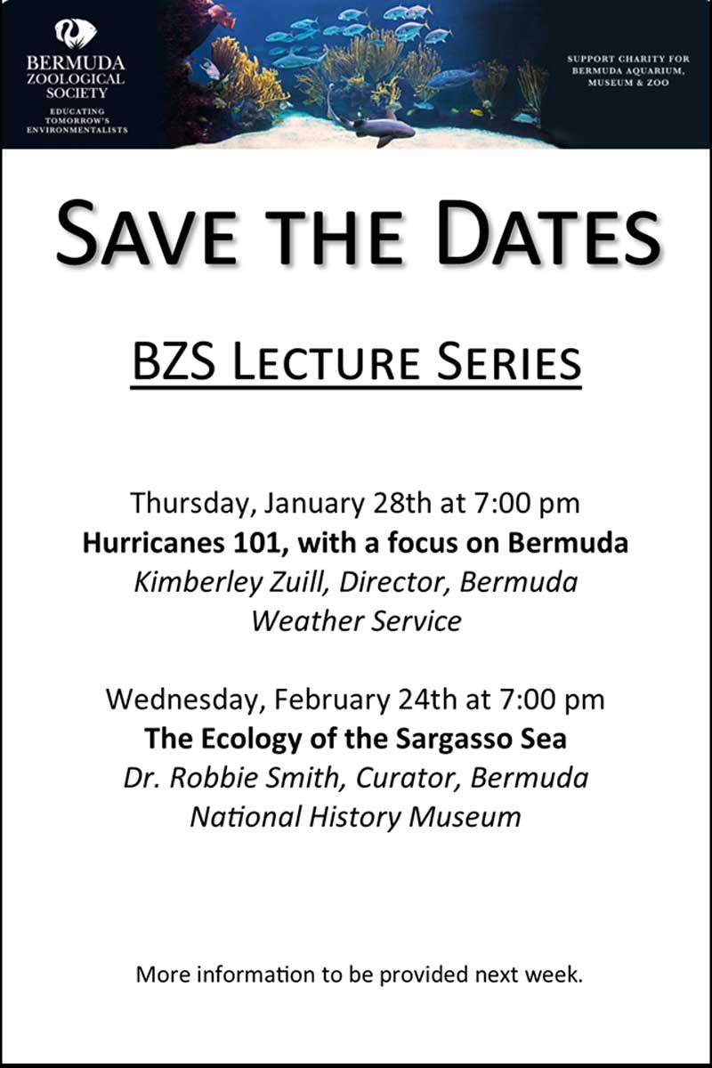 BZS Lecture series1