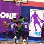 Basketball Bermuda Jan 27 2016 (16)