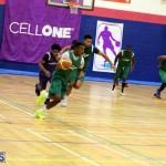 Basketball Bermuda Jan 27 2016 (4)