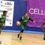 Basketball Bermuda Jan 27 2016 (8)