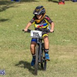 Cyclocross Racing Bermuda, January 10 2016-17