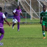 Football Bermuda, January 1 2016 (13)
