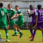 Football Bermuda, January 1 2016 (15)