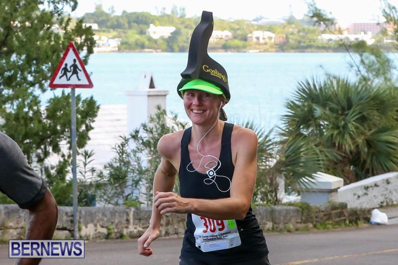 Goslings-To-Fairmont-Southampton-Race-Bermuda-January-10-2016-12